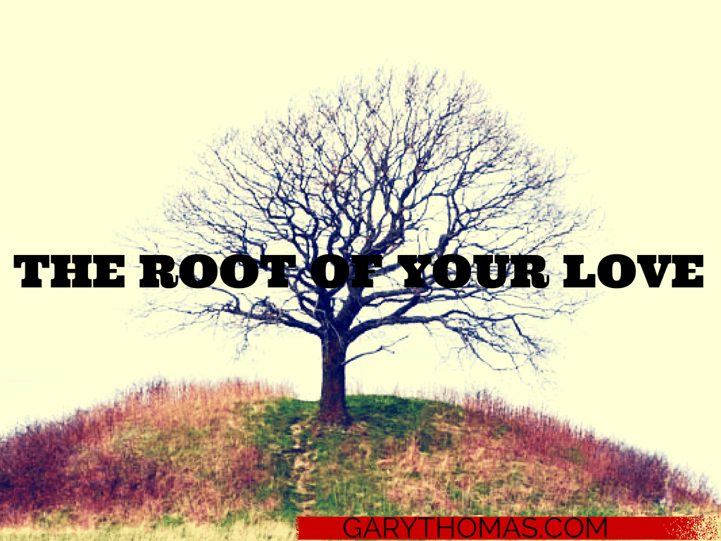 THE ROOT OF YOUR LOVE