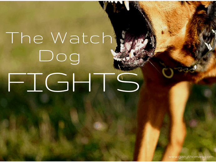 The Watch Dog Fights Final