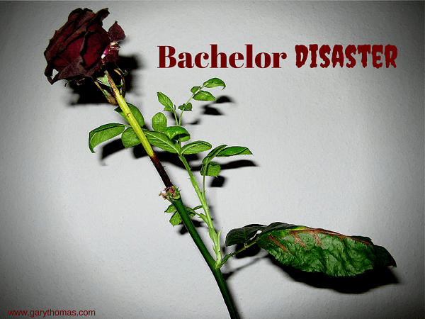 Bachelor Disaster final